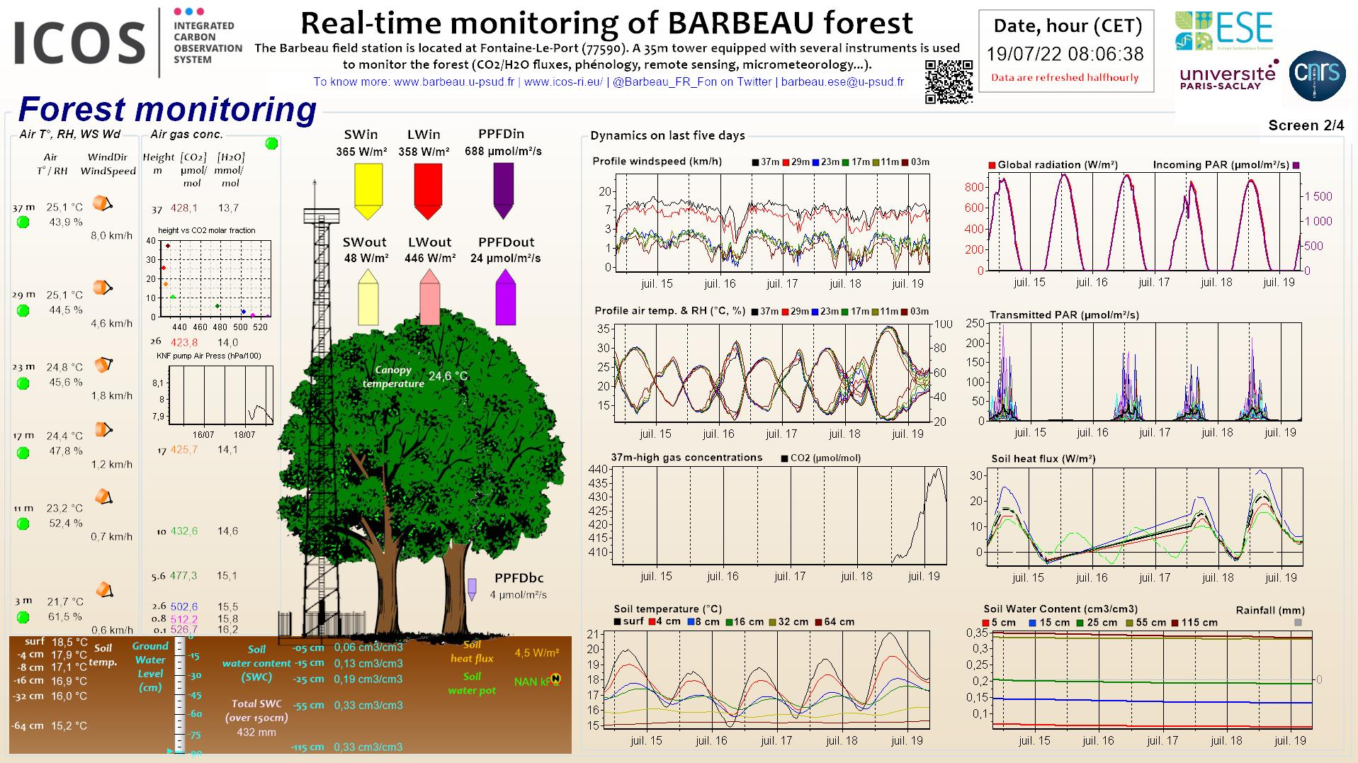Forest data